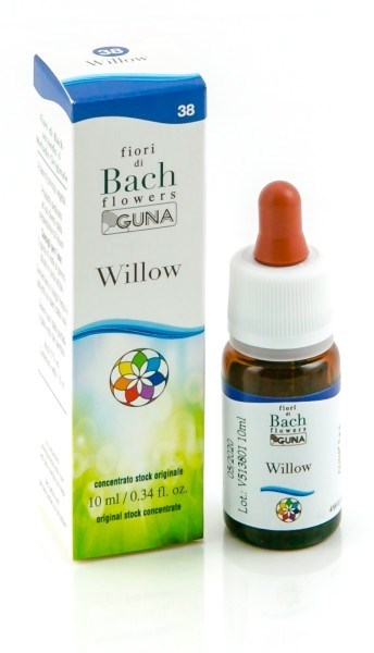 WILLOW GUN GOCCE 10ML