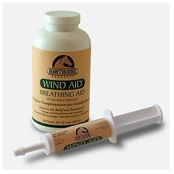 WIND AID SCIROPPO 947ML