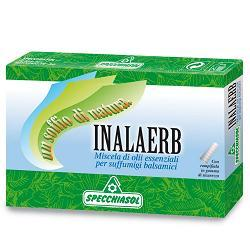 INALAERB SUFFUMIGI 7 FIALE 10ML