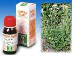 ACHILLEA 51 50ML TINTURA MADRE
