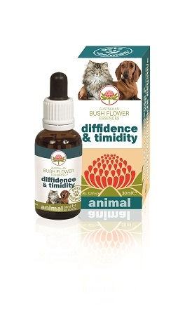 DIFFIDENCE & TIMIDITY 30ML